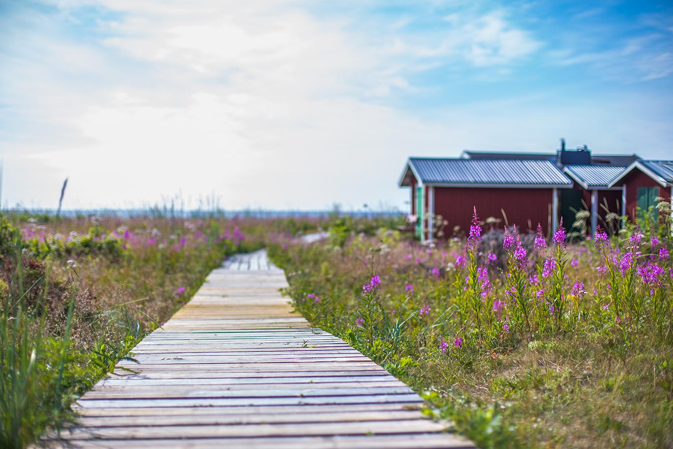 Haparanda Archipelago. Photo: Linnéa Isaksson
