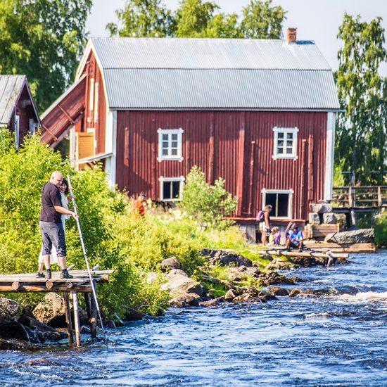 Kukkolaforsen Photo: Linnéa Isaksson